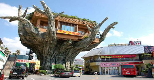 DESTINATION : Naha Harbor Treehouse Restaurant