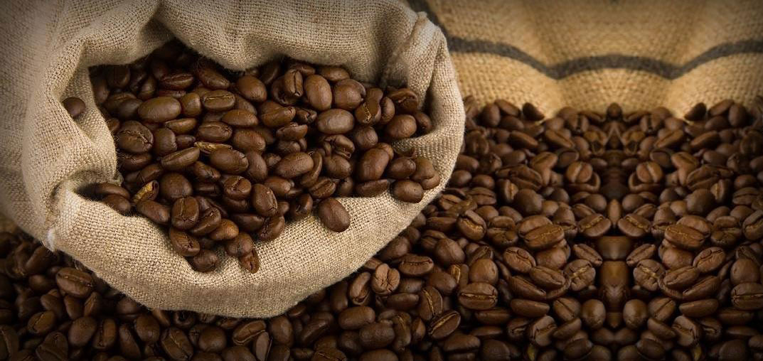 The Traveler's Guide to the Coffees of Africa