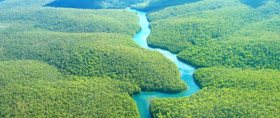 Amazonia National Park