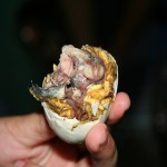 Balut from the Philippines