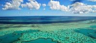 Great Barrier Reef Heart Reef, Australia