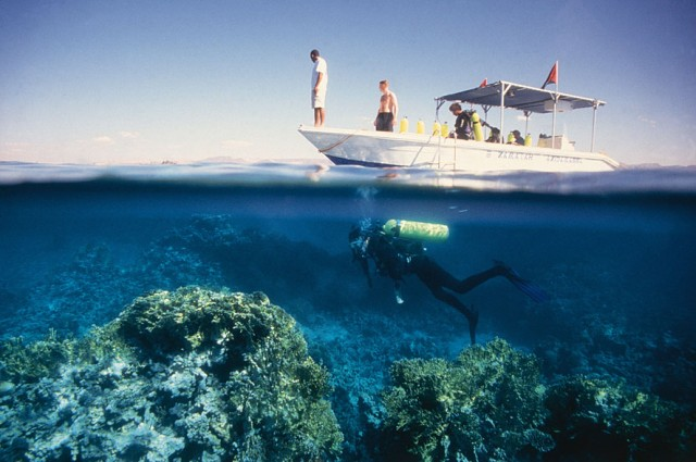 Scuba Diving in Gulf of Aqaba