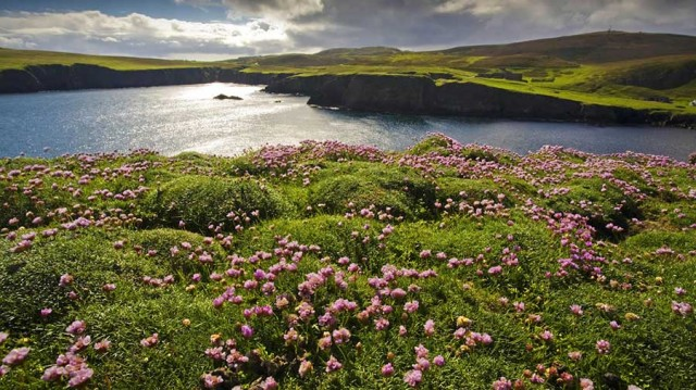Travel to Shetland, Scotland