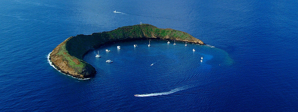 Best Places To Go Scuba Diving In Hawaii