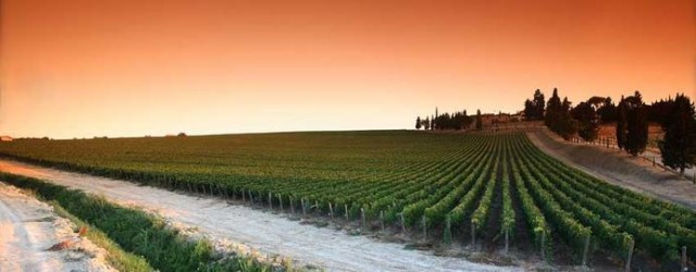 Travel to Valpolicella for Wine Tasting