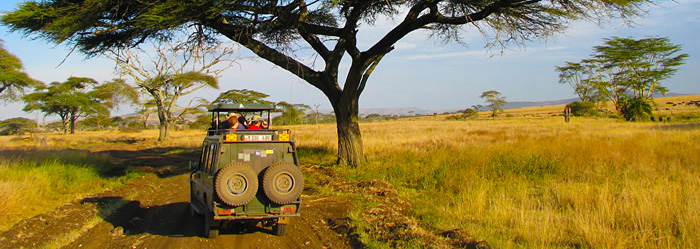An African Vacation Like No Other