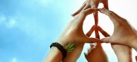 Group peace sign